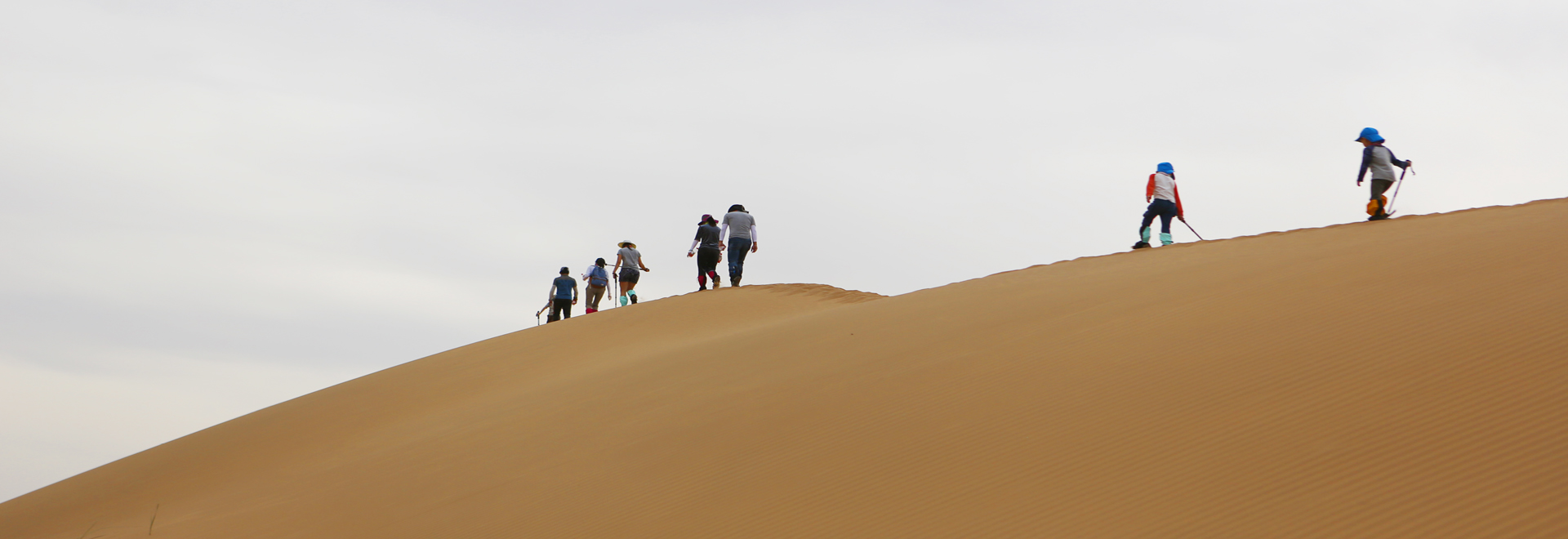 Camel Riding In Mongolian Desert And Jeep Surfing Sand Dunes